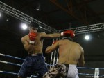 Romanian Fighting Series, Slobozia, 2011
